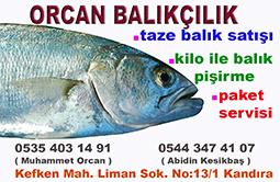 kefken orcan balıkçılık