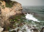 tuzağzı küçük sahil
